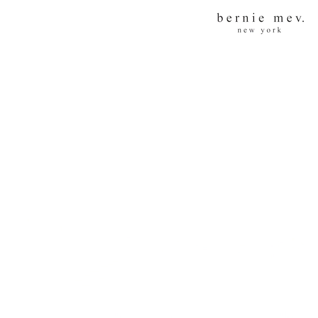 bernie_mev_technologie_ig.m4v